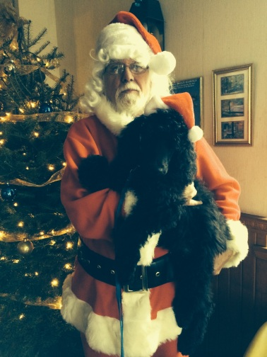 Remy with Santa. Dec 2015 when he went to work with Nancy his Puppy trainer. Thank You Mary and Nancy for the beautiful picture.