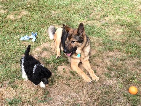 Gigi and Friend