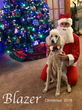 blazer christmas 2018