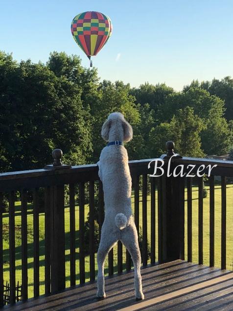 oblazer and hot air balloon