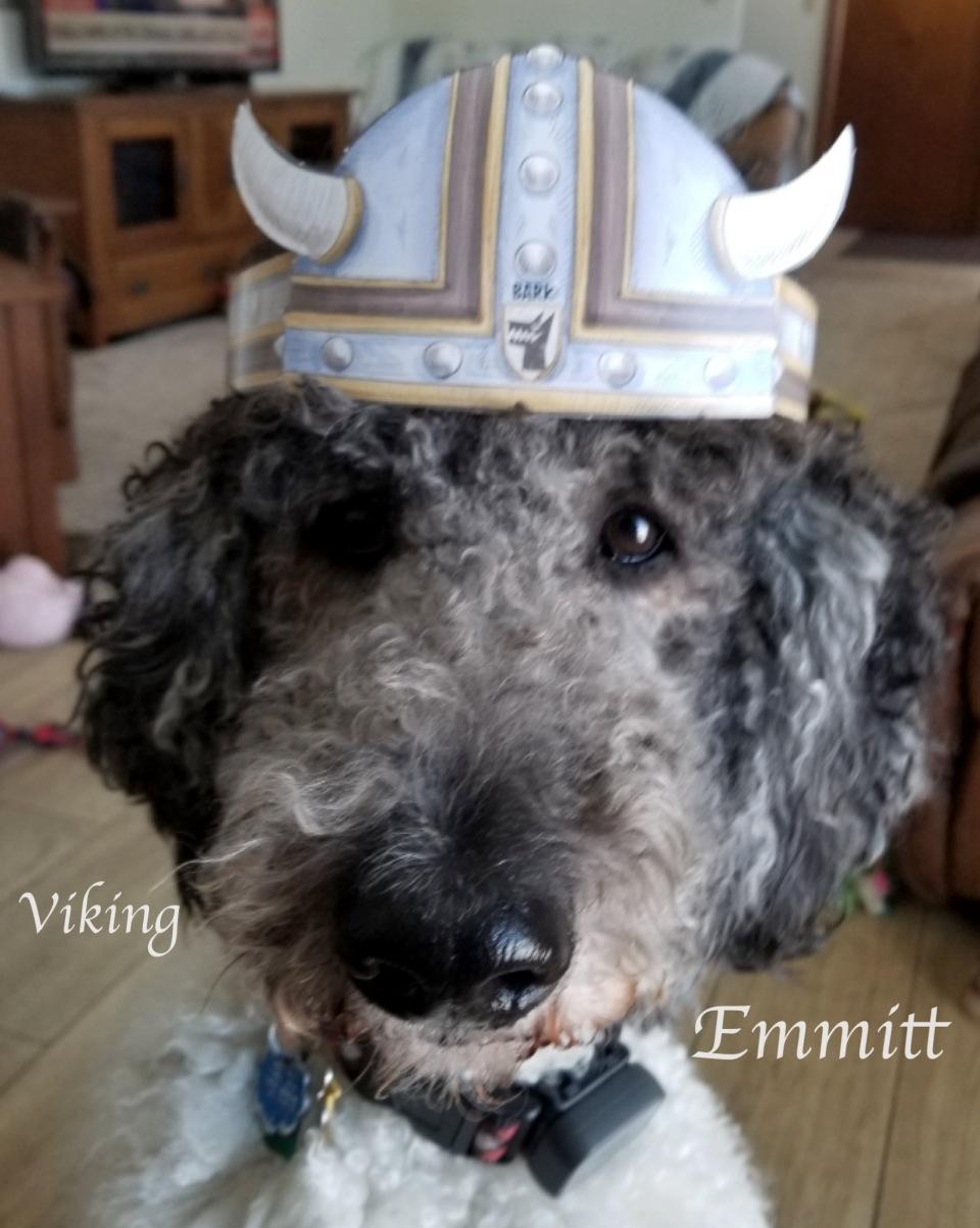 Viking Emmitt
