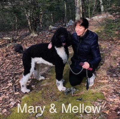 IMG_0072Mary & Mellow 2