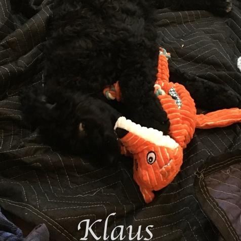 Klaus 4